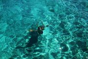 swimming in a turquoise sea water